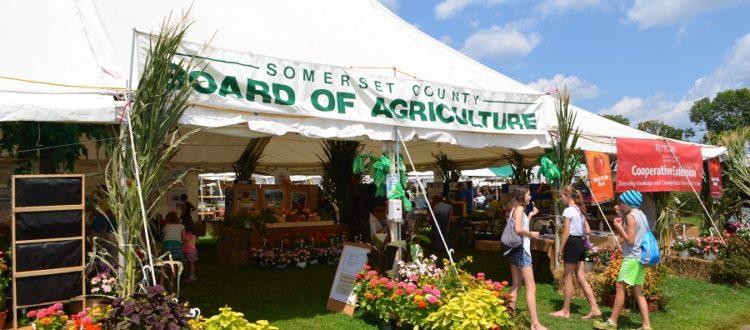 Roses In Garden: County Fair Season Arrives In The Garden State