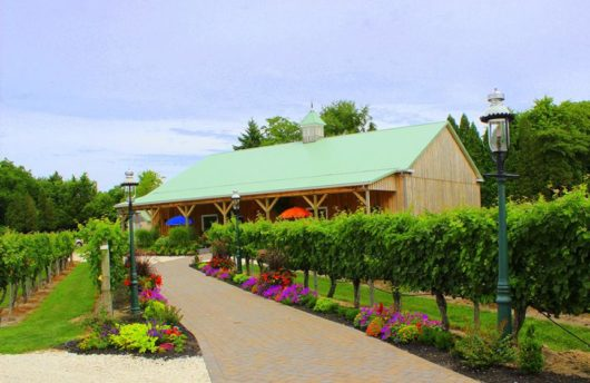 Photo Credit - Cape May Winery