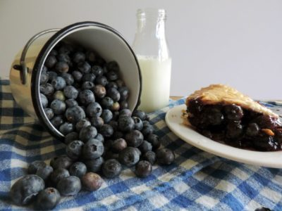 blueberry season in new jersey