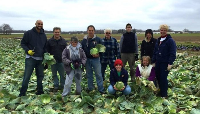 Gleaning Jersey Fresh Fridays