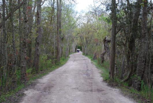 gravel path leading to farm