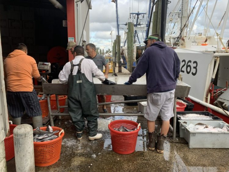 Fulfill, America's Gleaned Seafood, Trinity Seafood, Jersey Bites, Lisa Howard-Fusco