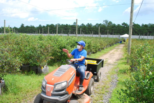 FullBlue360 farmer on tractor