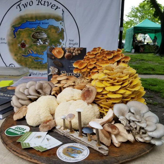 variety of mushrooms from Two River Mushroom co.
