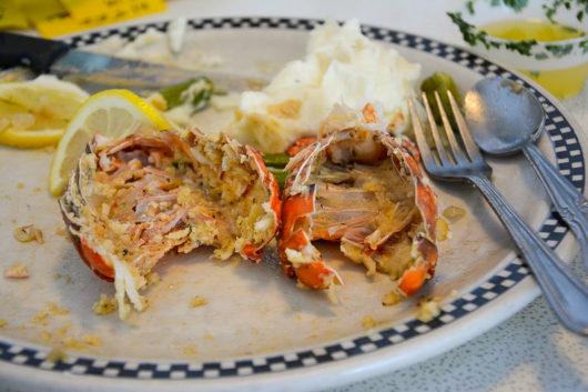 Lobster Tails devoured