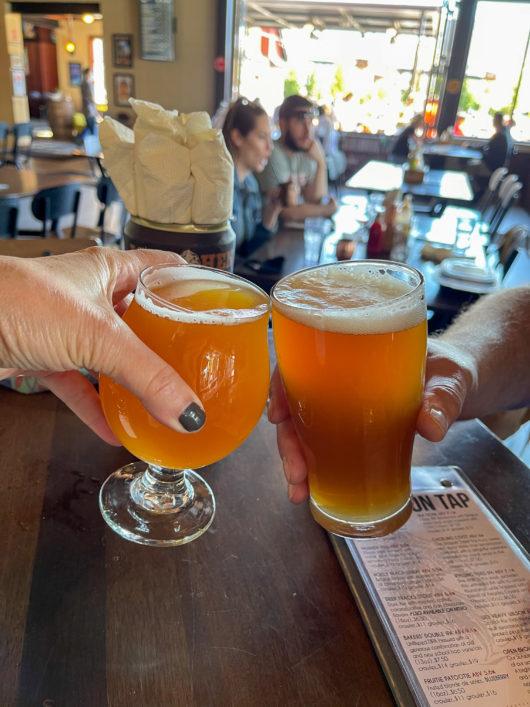 Mudhen glasses of beer