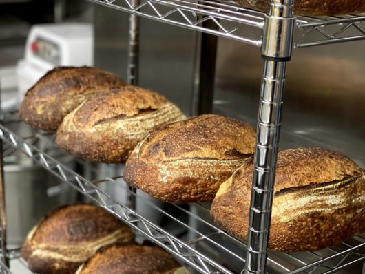 Benchmark Breads Country Loaf