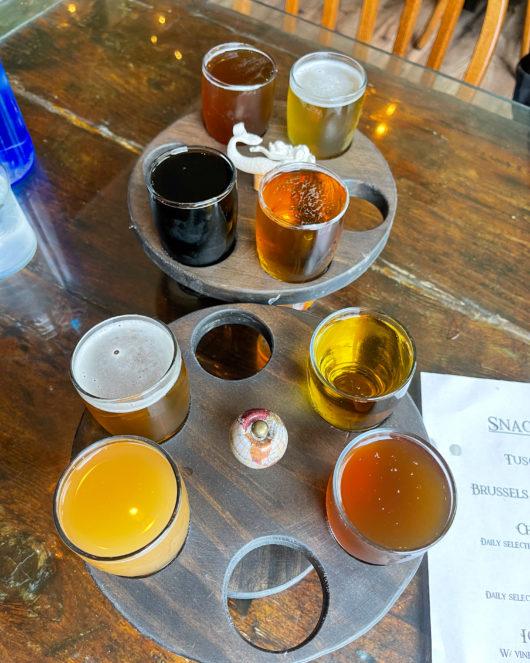beer flight at Descendants brewing